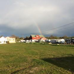 Jomfruland Camping (12)