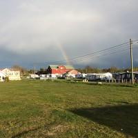 Om-Jomfruland-Camping